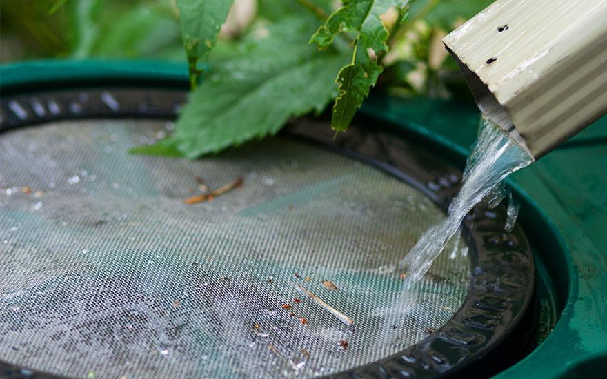 Odzyskiwanie wody deszczowej